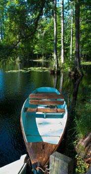 A Cypress Boat